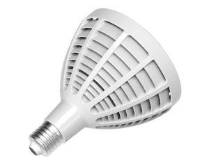 E27 Base 30W PAR30 LED Lamp 2016 Ce RoHS Approval pictures & photos