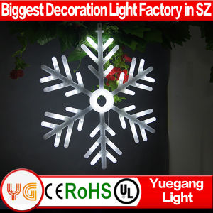 White Flash Big Snowflake Christmas Outdoor Decoration Motion LED Light pictures & photos