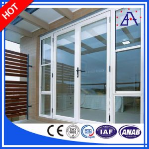 Customized Aluminum/Aluminium Frame Storm Doors Windows pictures & photos