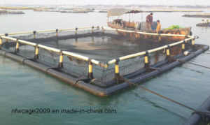 Circle Floating Aquaculture Fish Farming Cages Made of PE Knotless Net pictures & photos