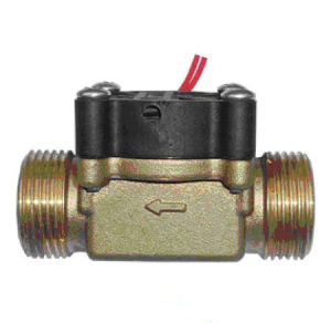 Piston Type Flow Switch in Brass Material pictures & photos
