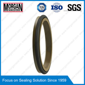 Ad Type Wear Resistance Hydraulic Cylinder Rubber/PTFE Scraper Seal Ring pictures & photos