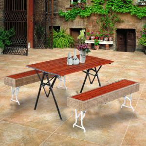 Outdoor Garden Furniture Restaurant Plastic Wood Rattan Table and Chair pictures & photos