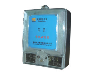 Single-Phase Intelligent Recloser Switch (63A) (TH-BSG-02)