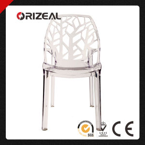 Replica Modern Designer Spiderwoman Dining Plastic Crystal Chair (OZ-1190PC) pictures & photos