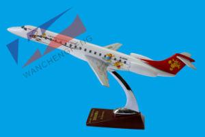Plane Model (ERJ145) pictures & photos
