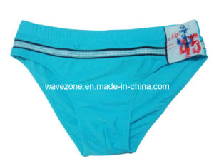 Men′s Swim Trunk (WZM-024)