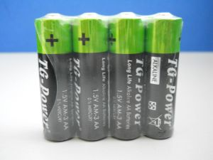 AA 1.5V Alkaline Battery (LR6)
