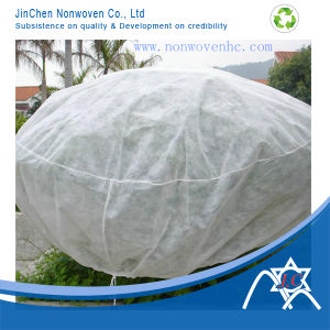 Spunbond Nonwoven Fabric for Plant Cover pictures & photos