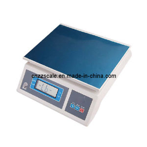 Electronic Platform Balance Scale (ZZDT-4) pictures & photos