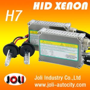 HID Ballast 24V
