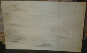 Poplar Veneer with Competitive Price pictures & photos