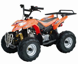 110CC ATV (T-110G)