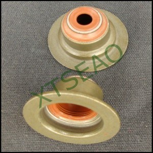 Valve Stem Oil Seal Customer Demand Seals pictures & photos