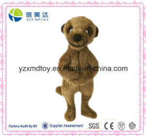 Standing Custom Meerkat Plush Stuffed Toys pictures & photos