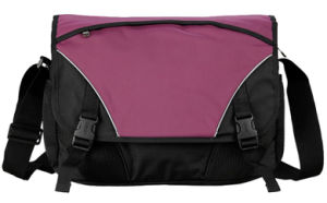 Fashion Messenger Bag for Laptop with Nylon (SM8301) pictures & photos