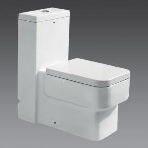 Arrowa Toilet