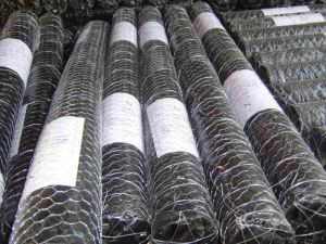 PVC-Coated Bird Net/Chicken Wire Mesh pictures & photos