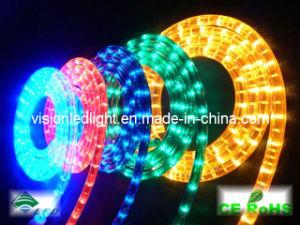 LED Rope Light (VS-2D-R/G/Y/B)