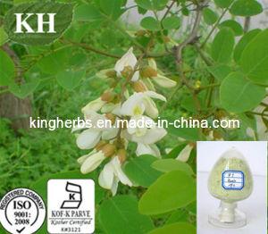 Sophora Japonica Extract 95% Rutin NF11, 98% Rutin DAB9, Rutin Ep pictures & photos