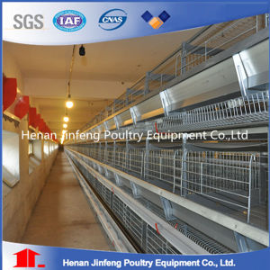H Type Chicken Egg Laying Cages for Chicken Coops pictures & photos