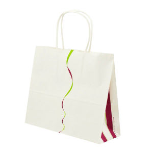 Custom Printed Paper Gift Packaging Bag (OEM-PB020) pictures & photos