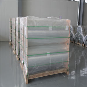 Function Polyester Film for Lamination Film pictures & photos