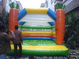 Inflatable Bouncy Castale Jumper Castle for Kids pictures & photos