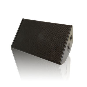 PS15 Stage Monitor Speaker