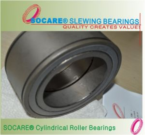 Full Complement SL Series Cylindrical Roller Bearing
