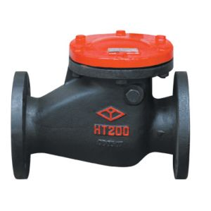 Swing Ctart Check Valve H44T-10 pictures & photos