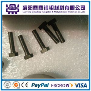 Factory Supply High Temperature Various Size Customized Tungsten and Molybdenum Screws & Nuts & Bolts pictures & photos