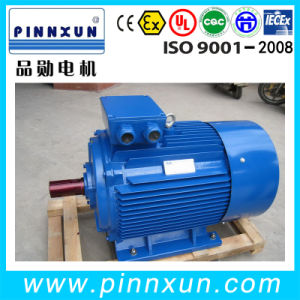 Y2 Series Squirrel Cage Induction Motor pictures & photos