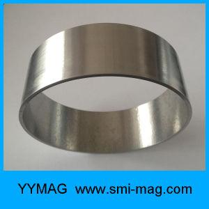 Golden/Silver Color Fecrco Ring Magnet pictures & photos