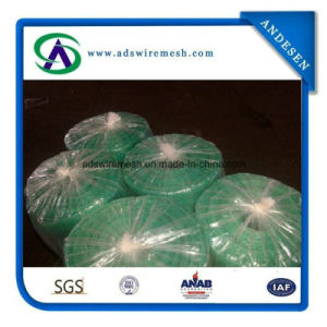 14X17mesh 170-185G/M2 Plastic Window Screen for Anti-Mosquito pictures & photos