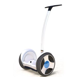 Golf Scooter (Ninebot N1U) pictures & photos