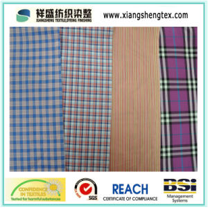 Yarn Dyed Silk-Cotton Paj /Silk Check /Cotton Check Fabric pictures & photos