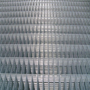 Hot-Galvanized Plating Welded Wire Mesh Panels pictures & photos
