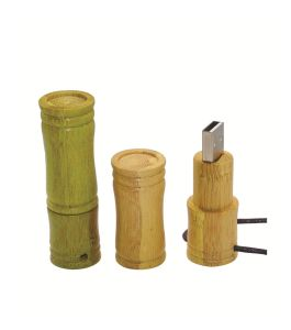 Customed Wood USB Pen Drive Bamboo USB Flash Drive pictures & photos