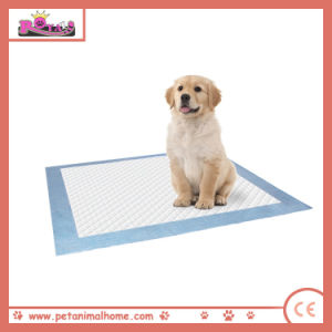 Waterproof PE Backing Training Pet Puppy Pad in Different Colors pictures & photos