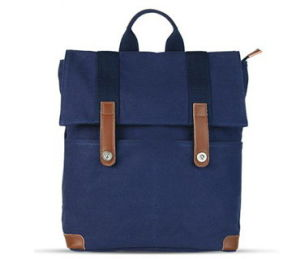 Canvas School Backpack Bag, Canvas Bags (FDS1) pictures & photos