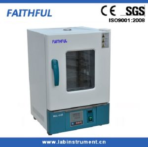 CE Model 45L Forced Hot Air Drying Oven pictures & photos