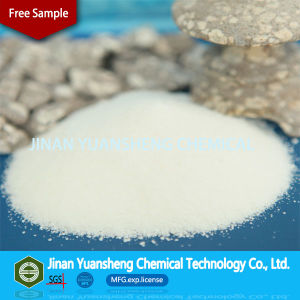 Factory Price Retarder Powder Sodium Gluconate for Concrete (sodium gluconate) pictures & photos