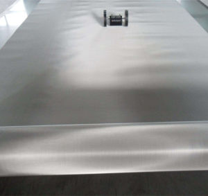 SUS 304 316 Mesh Stainless Steel Wire Mesh/Stainless Steel Woven Wire Cloth pictures & photos