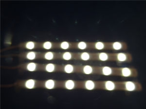 DC12V IP68 5054 Rubber Tube Flexible LED Strip pictures & photos