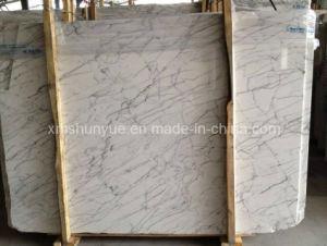 Statuarietto Biaco Carrara Marble Slabs for Floor / Wall/Countertop