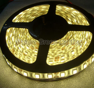 LED Strip Light SMD 3528SMD/SMD 5050/SMD 2835/SMD 5630 pictures & photos