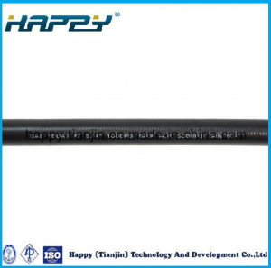SAE100 R1 at Rubber Covered Hydraulic Hose pictures & photos
