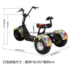 1000W Three Wheels Electric Motor Scooter with Double Seats pictures & photos