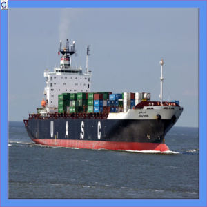 Sea Freight From China to Global (IC0020) pictures & photos